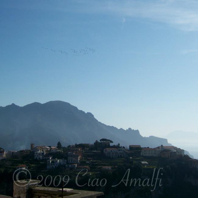 Amalfi Coast Cranes