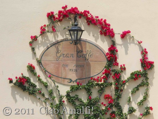 Bougainvillea blooms at the Gran Caffè in Amalfi