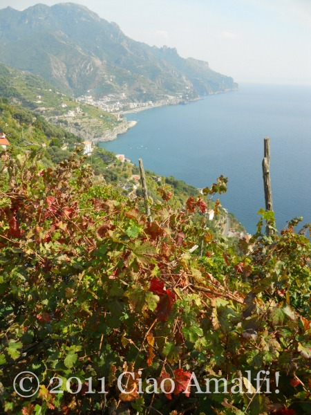 Autumn view from Ravello