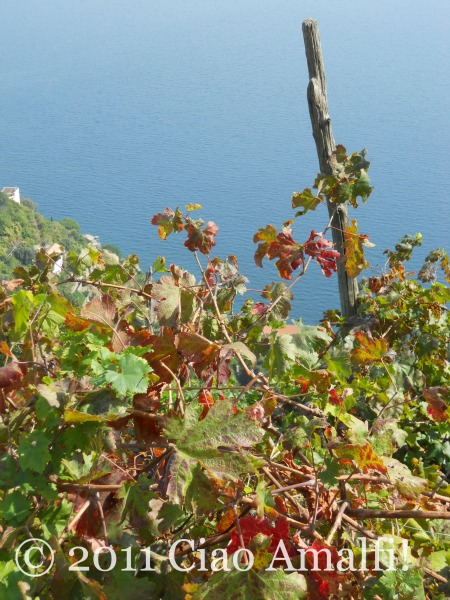Autumn beauty on the Amalfi Coast
