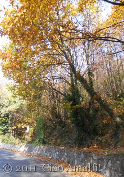 Autumn drive on the Amalfi Coast