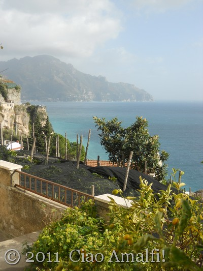 View of Amalfi from Vettica