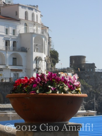 Spring flowers in Amalfi