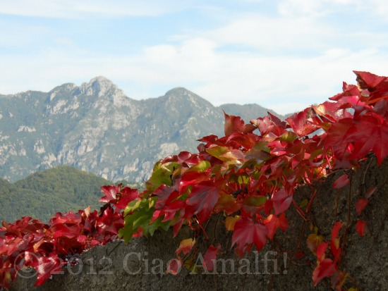 Thanksgiving on the Amalfi Coast