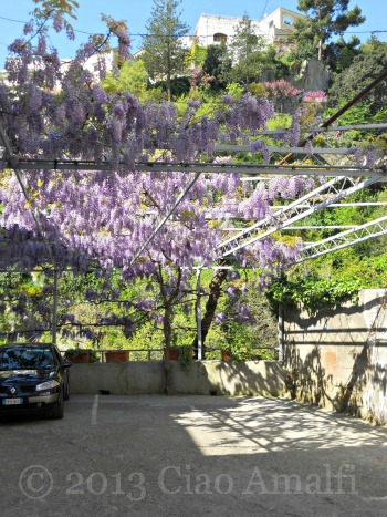 Ciao Amalfi Coast Travel Positano Wisteria Parking