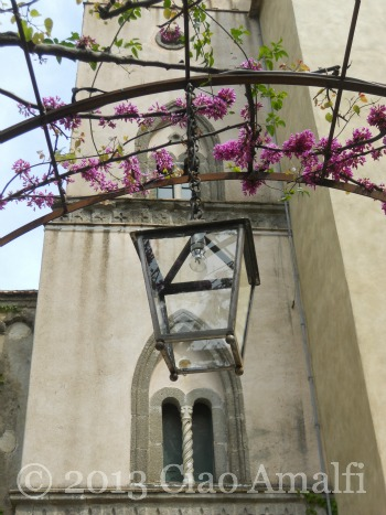 Ciao Amalfi Coast Travel Ravello Villa Cimbrone Pink Blossoms Tower