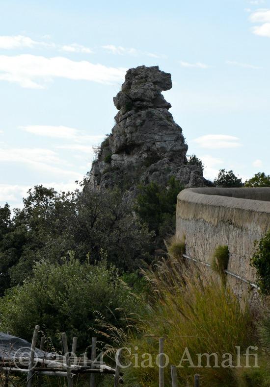 Amalfi Coast Travel Meet the Bear