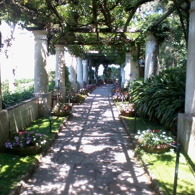 I could have stayed in these gardens forever - Villa San Michele in #Anacapri. #capri #gardens #italy #summer