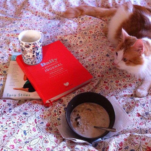 Breakfast in bed...for maybe the first time ever. Toulouse is good company. Buona domenica / happy Sunday! #dailygreatness #dailygreatnessjournal @dailygreatness