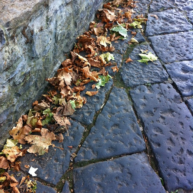 Outside it's cool and drizzly. Autumn is in the air! Here and there sycamore leaves add a crunch to your step. #amalficoast #thisisfall #italy
