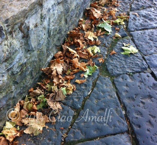 Amalfi Coast Travel Autumn Leaves