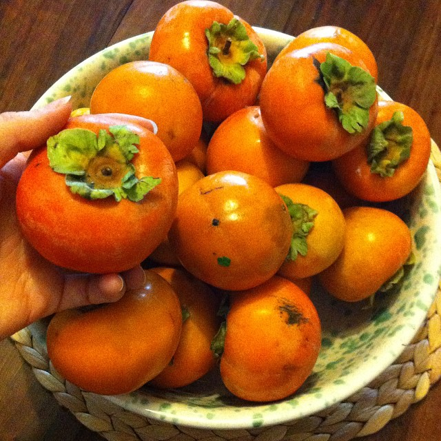 A little over €3 for a gigantic bowl full of persimmons. #gooddeal #autumn #autunno #eattrue #eatclean