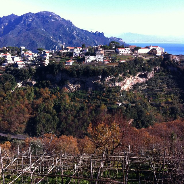 No more leaves on the vines but the autumn colors are still lovely! #AmalfiCoast #Ravello