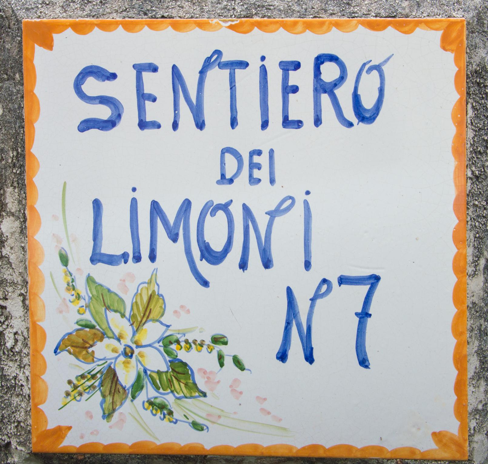 ciao-amalfi-lemons-5