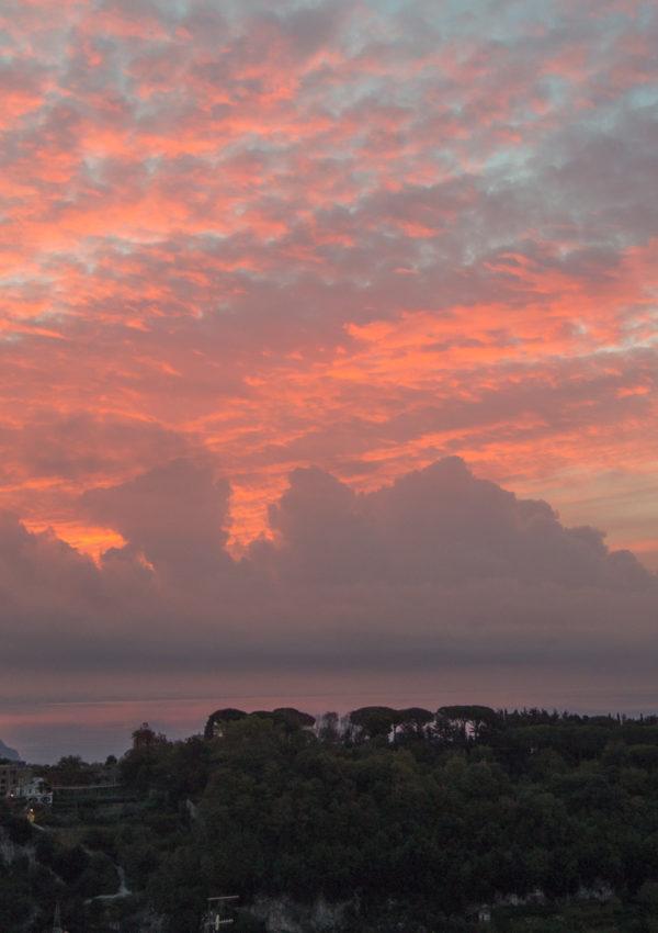A Rose-tinted Morning