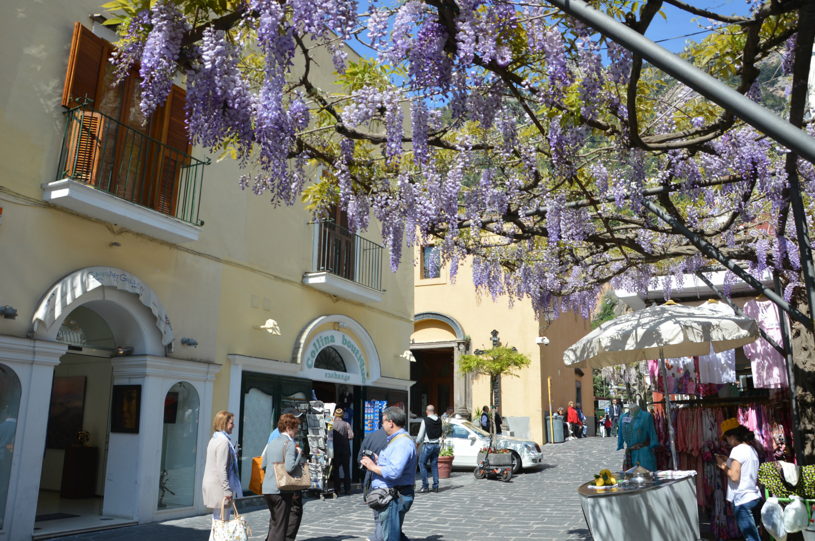 Wisteria in Positano - Spring on the Amalfi Coast
