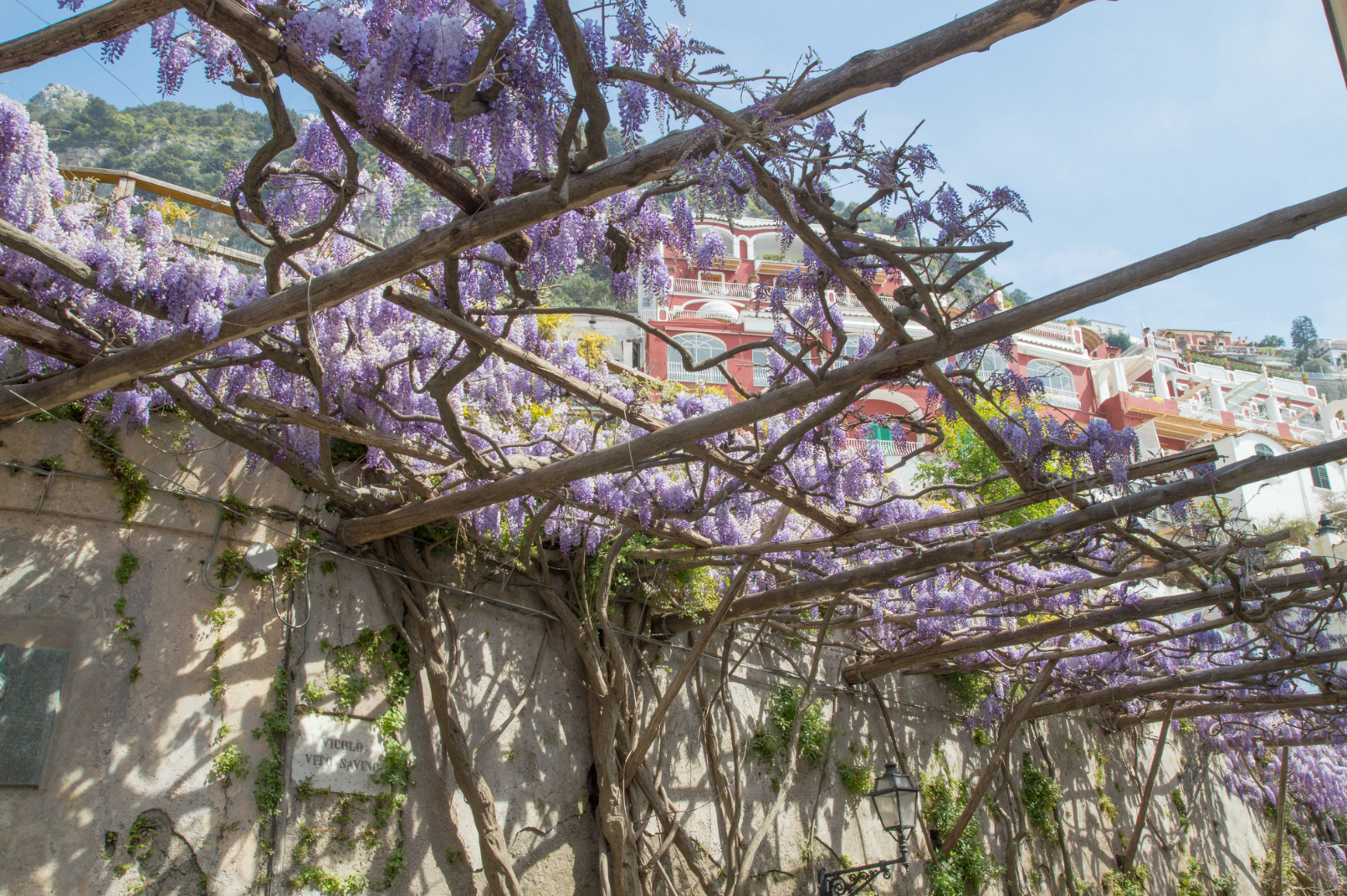 ciao-amalfi-positano-wisteria-2