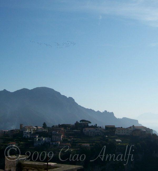 Hearing Ancient Birdsongs on the Amalfi Coast