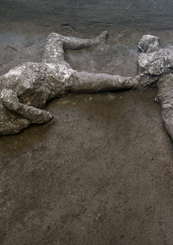 Life in Plaster: New Discoveries from Pompeii